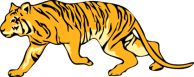 """""""a gift of wildness"""" tiger_5.png"""